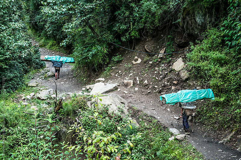 Sherpa's carrying huge loads of timber up the Lukla Valley, Everest Region, Sagarmatha National Park by Thomas Pickard Photography Ltd. for Stocksy United