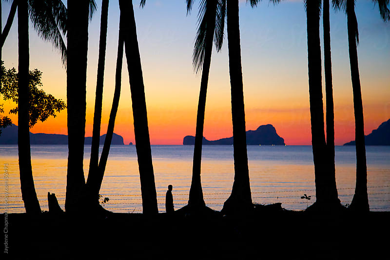 Striking sunset, looking through palm trees, Las Cabanas Beach, Palawan Island, Philippines by Jaydene Chapman for Stocksy United