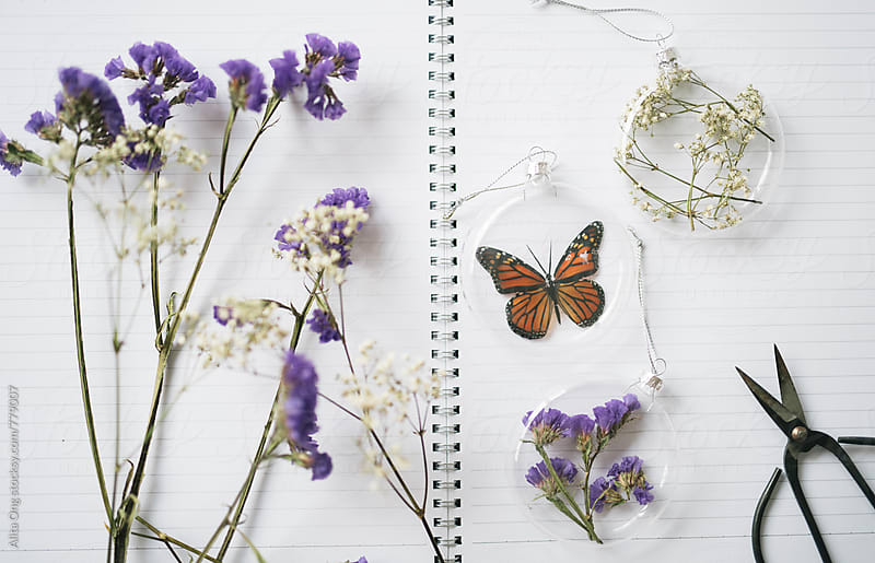 Beautiful DIY Christmas baubles made of dried flowers and glass  by Alita Ong for Stocksy United