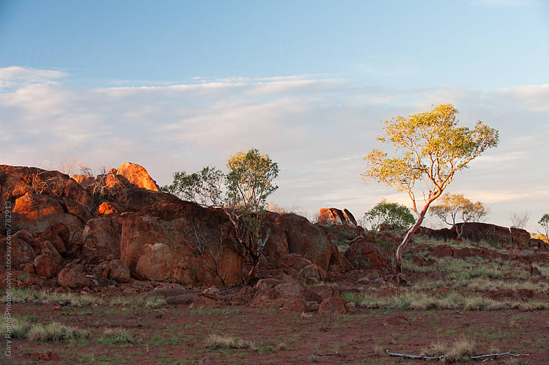 Rocks and Scrub in the Australian Desert by Gary Radler Photography for Stocksy United