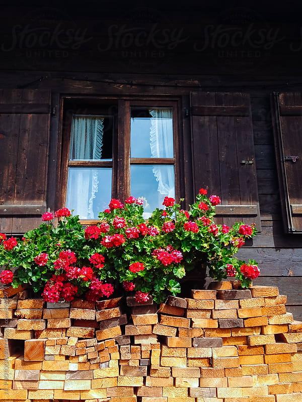 Cottage with geraniums by J.R. PHOTOGRAPHY for Stocksy United