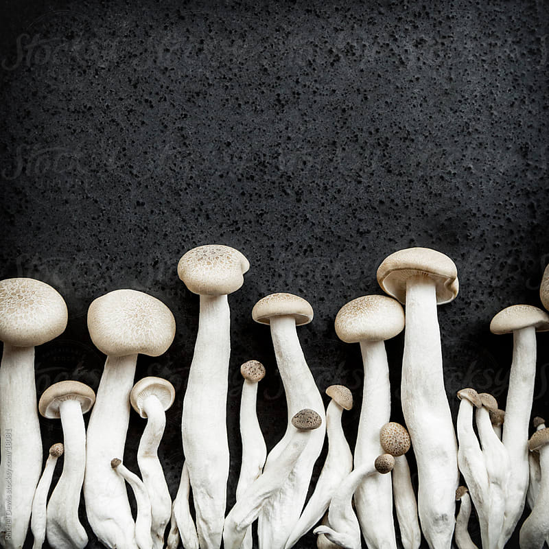 Oriental Japanese shimeji mushrooms. by Rachel Dewis for Stocksy United