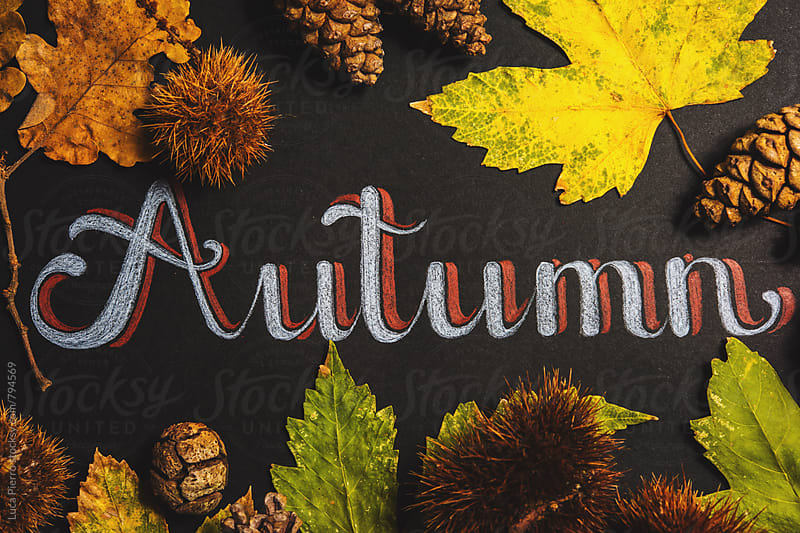 Autumn Composition Sign by Luca Pierro for Stocksy United