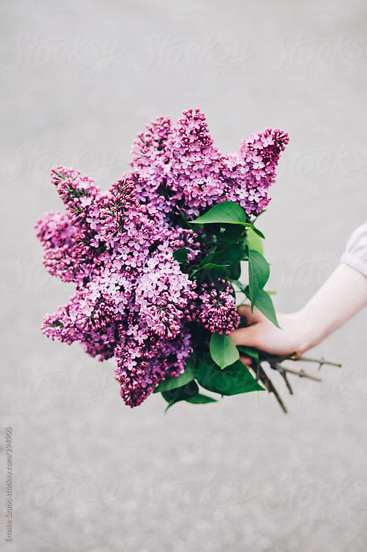 Girl holding bouquet of lilac by Emoke Szabo for Stocksy United