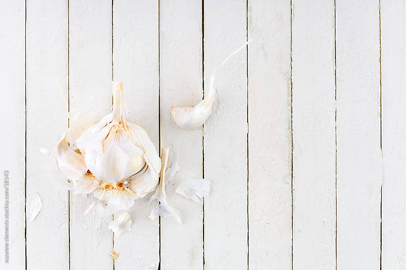 Fresh Organic Garlic Bulb by suzanne clements for Stocksy United