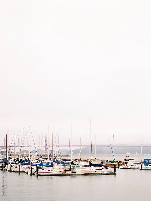 sailboats in San Francisco by Meghan Boyer for Stocksy United