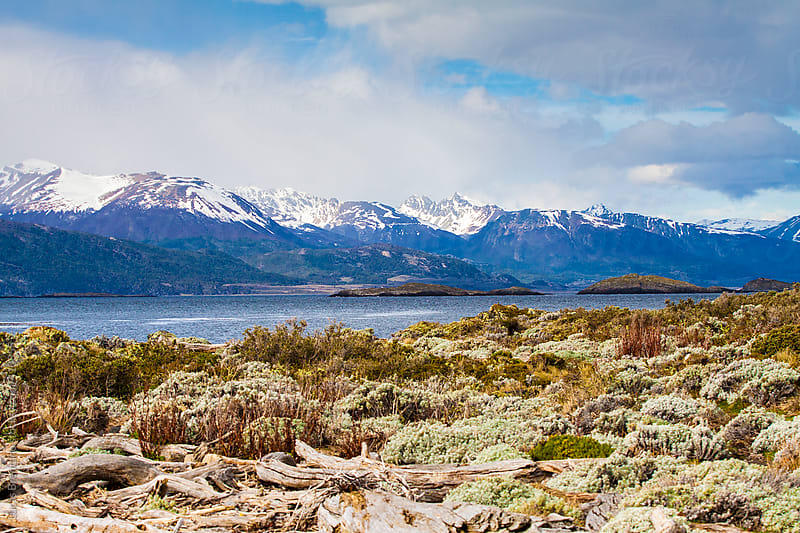 Islands of the Beagle Channel - Patagonia by Lucas Brentano for Stocksy United