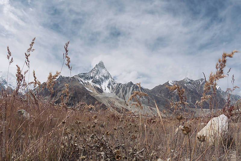 mountain view from ground level  by RG&B Images for Stocksy United