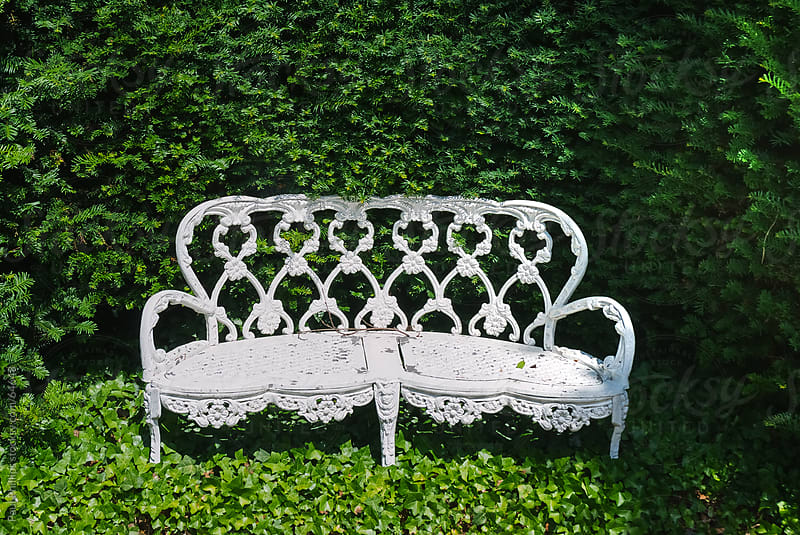 Metal white garden chair in foliage by Paul Phillips for Stocksy United