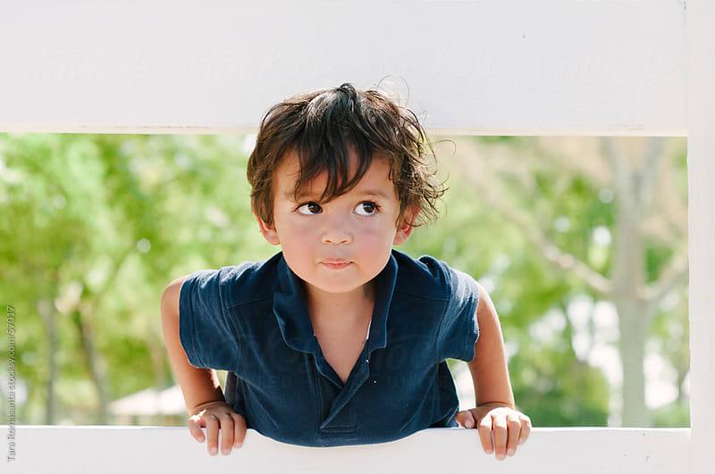 cute toddler boy looks up through a fence by Tara Romasanta for Stocksy United
