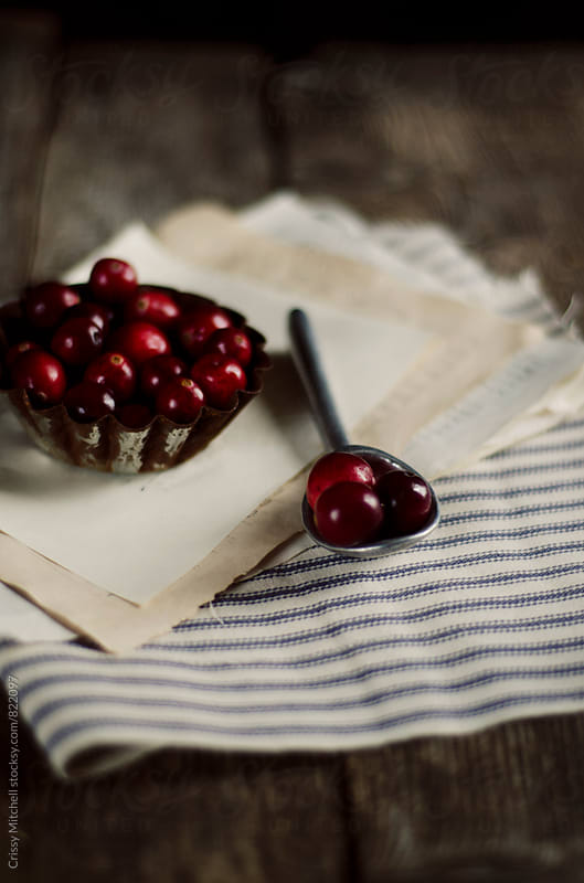 cranberries by Crissy Mitchell for Stocksy United
