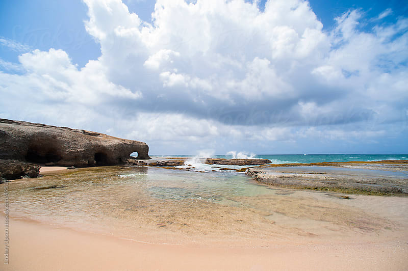 Rugged coast of Barbados by Lindsay Upson for Stocksy United