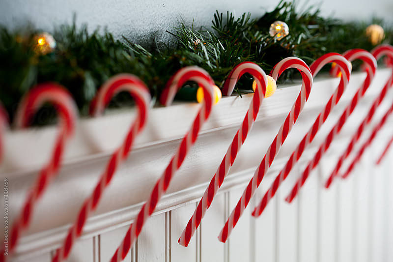 Holidays: Row Of Glass Candy Canes by Sean Locke for Stocksy United