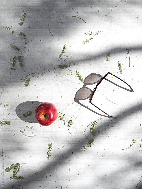 Apple, glasses and sun light  by Sophia Hsin for Stocksy United