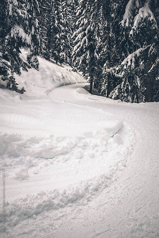 Sled Track by Good Vibrations Images for Stocksy United