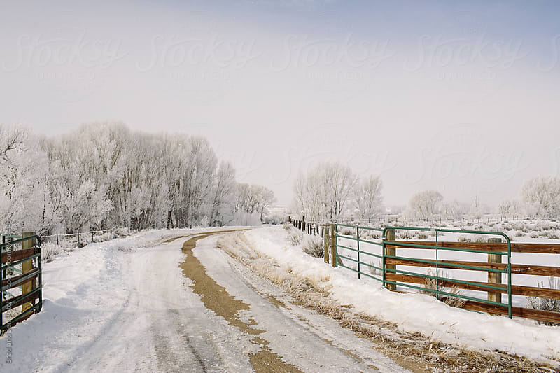 Winter Farm by Brad and Jen Butcher for Stocksy United