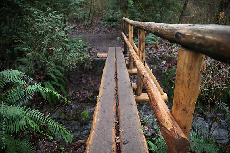 A Tree Log Bridge Going Across A Creek by Carey Haider for Stocksy United