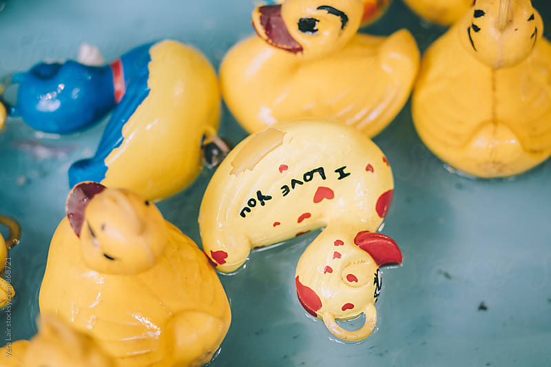 Plastic ducks in a Carnival Game by Vera Lair for Stocksy United