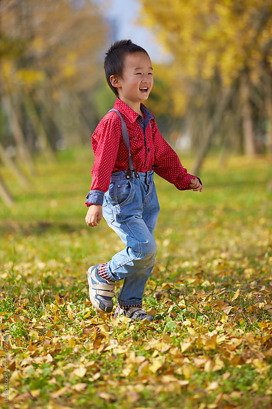 little boy in autumn ginkgo woods by Bo Bo for Stocksy United
