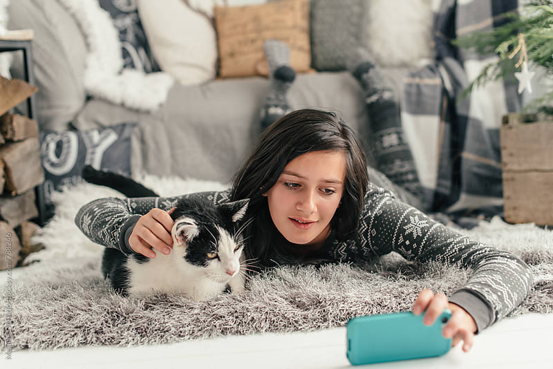 Holiday kitty  by Melanie DeFazio for Stocksy United