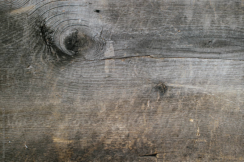 Wood Grain by Beth Grimes for Stocksy United