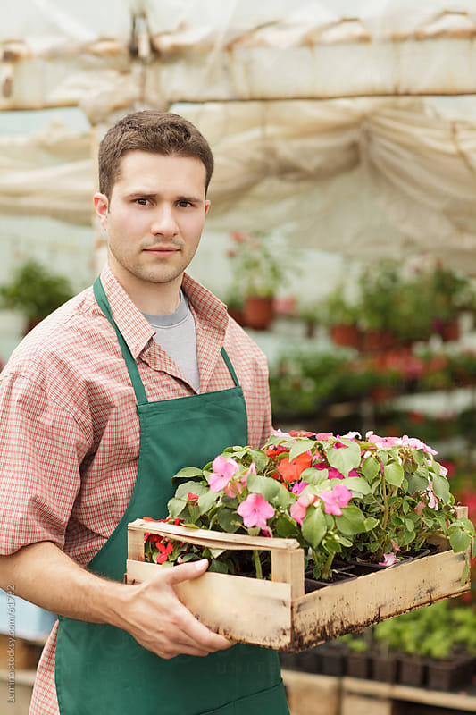 Man Holding Flowers in a Nursery Garden by Lumina for Stocksy United