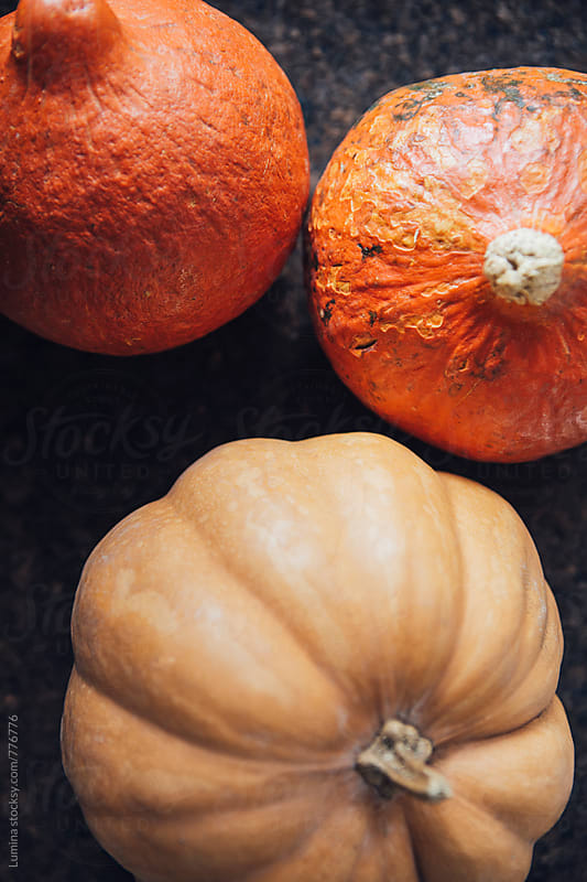 Pumpkins by Lumina for Stocksy United