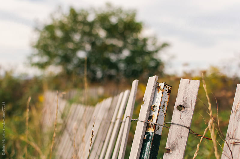fence in a field by Deirdre Malfatto for Stocksy United