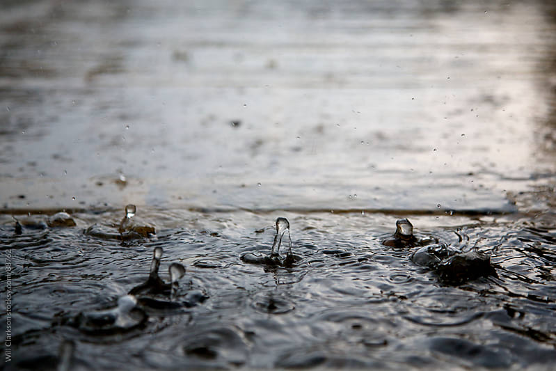 Raindrops hitting a puddle by Will Clarkson for Stocksy United