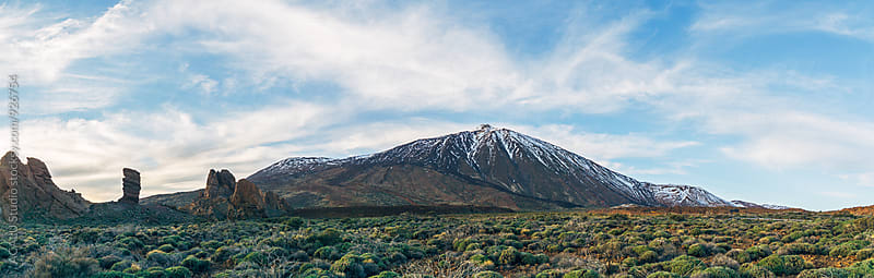 View panoramic of the Natural Monument and volcano Teide in National Park by ACALU Studio for Stocksy United