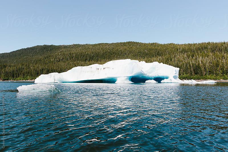 iceberg in Alaska by Cameron Zegers for Stocksy United