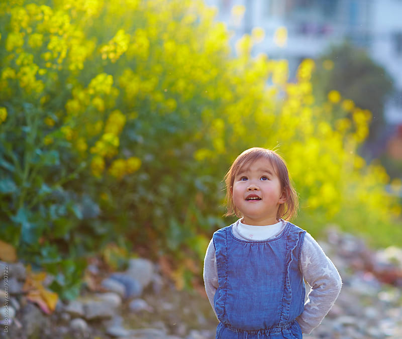 lovely asian litle girl in spring field by Bo Bo for Stocksy United