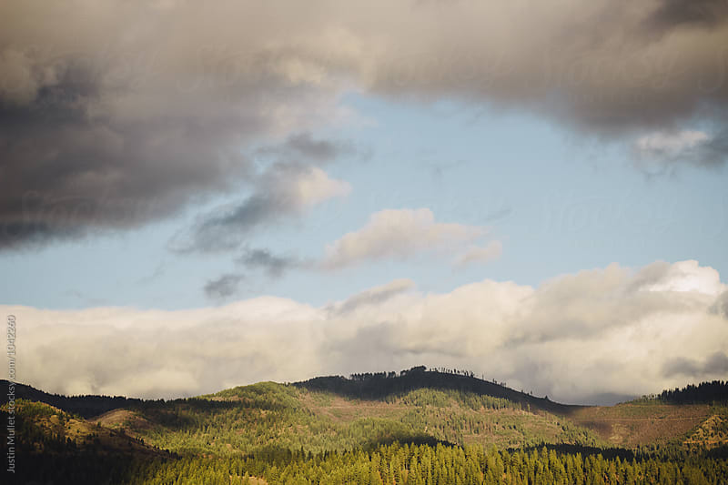Mountain top during sunset in North Idaho.  by Justin Mullet for Stocksy United
