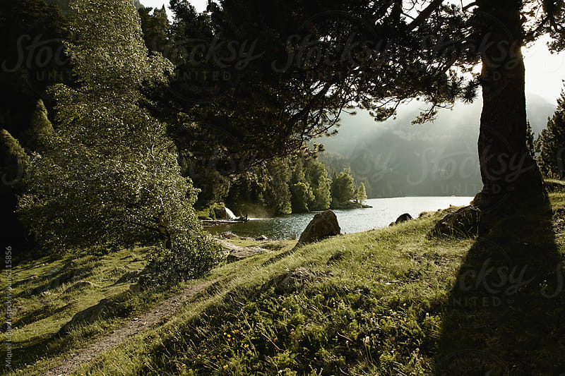 Lake and green trees in the mountains of Pyrenees by Miquel Llonch for Stocksy United