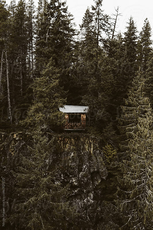 tree house cabin on cliff in the forest by Nicole Mason for Stocksy United