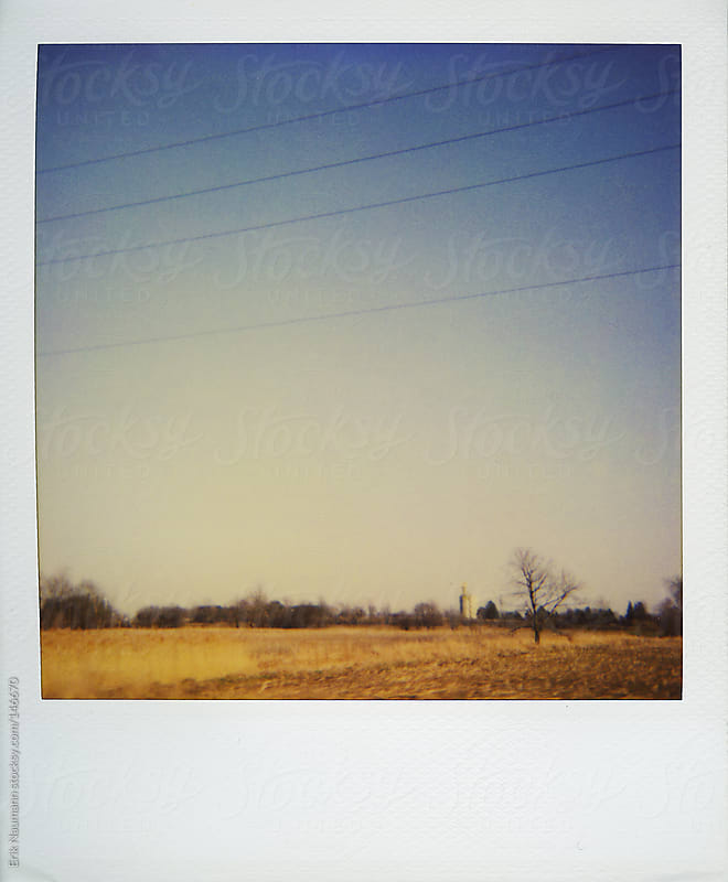 Polaroid of a rural field by Erik Naumann for Stocksy United