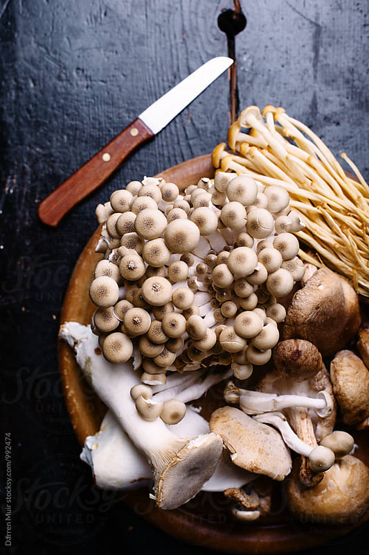 Mixed exotic mushrooms on a wooden background. by Darren Muir for Stocksy United