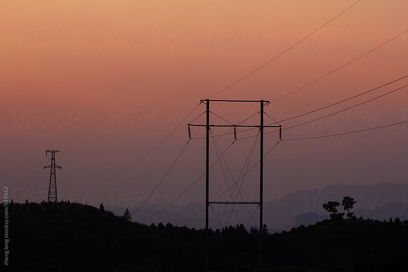 telegraph pole by zheng long for Stocksy United