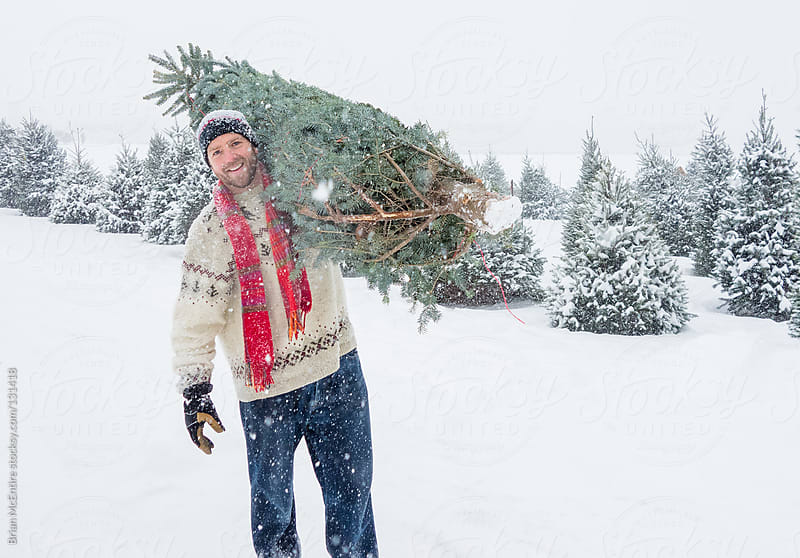 Man carrying bundled Christmas Tree over Shoulder in Snow by Brian McEntire for Stocksy United