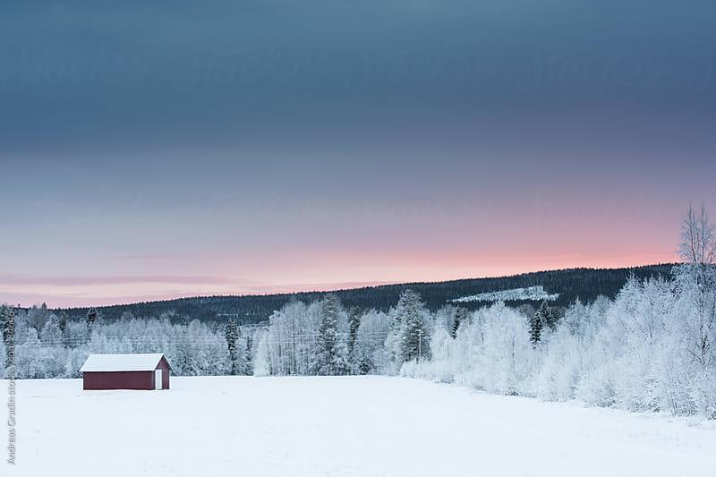 winter landscape in Sweden by Andreas Gradin for Stocksy United