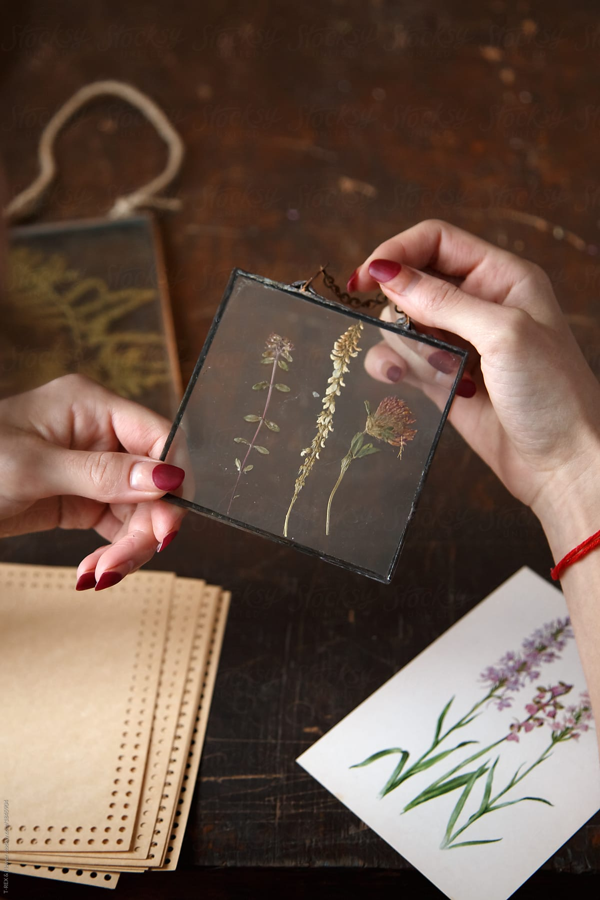 How to collect herbarium on the nails