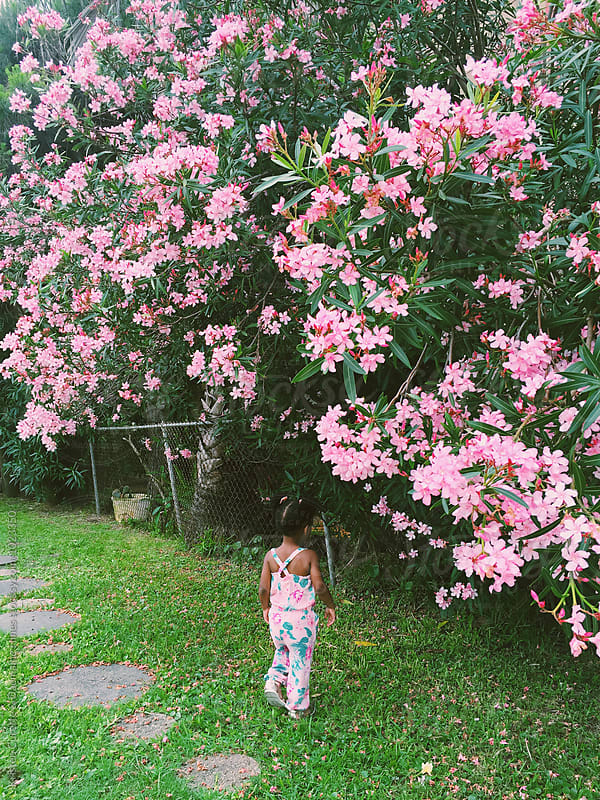A young girl standing under a flower bush / tree by Kristen Curette Hines for Stocksy United