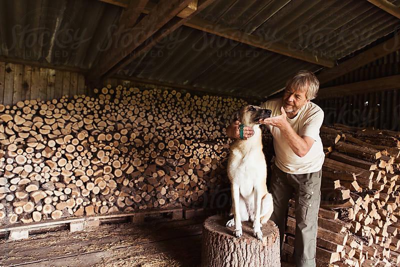 Senior man taking care of his pet dog, a shepherd. by Ivar Teunissen for Stocksy United