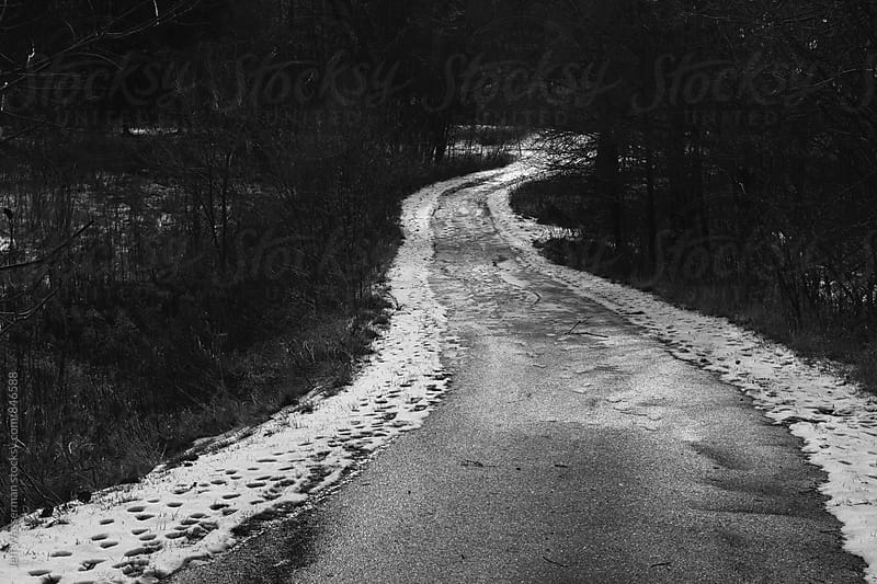 Slushy Pathway in the Woods in Winter by Jeff Wasserman for Stocksy United