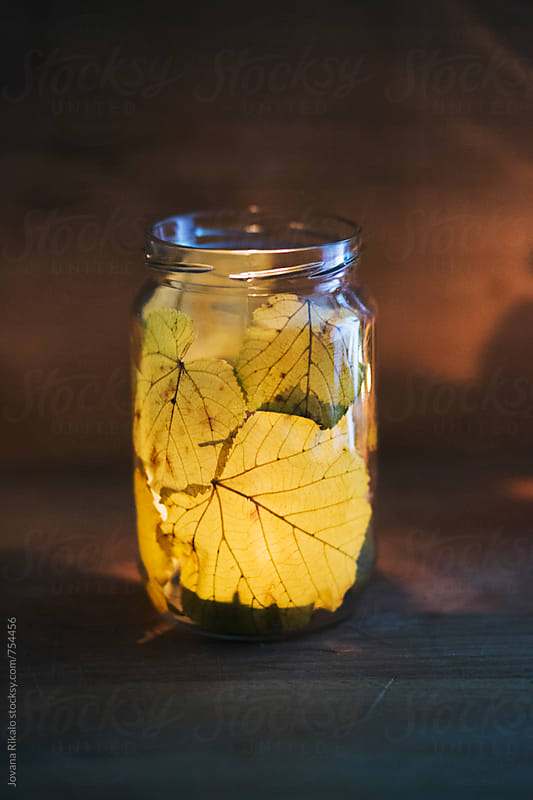Candle in a leaf jar by Jovana Rikalo for Stocksy United