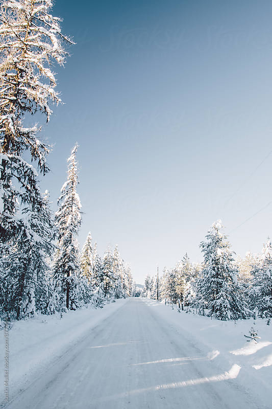 Snow covered rural road under a brilliant blue sky.  by Justin Mullet for Stocksy United