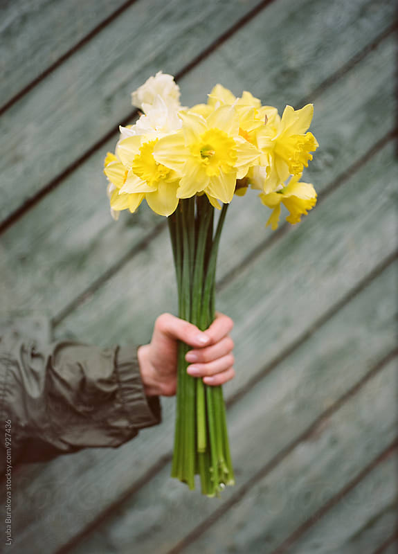 Woman holding bouquet of daffodils by Lyuba Burakova for Stocksy United