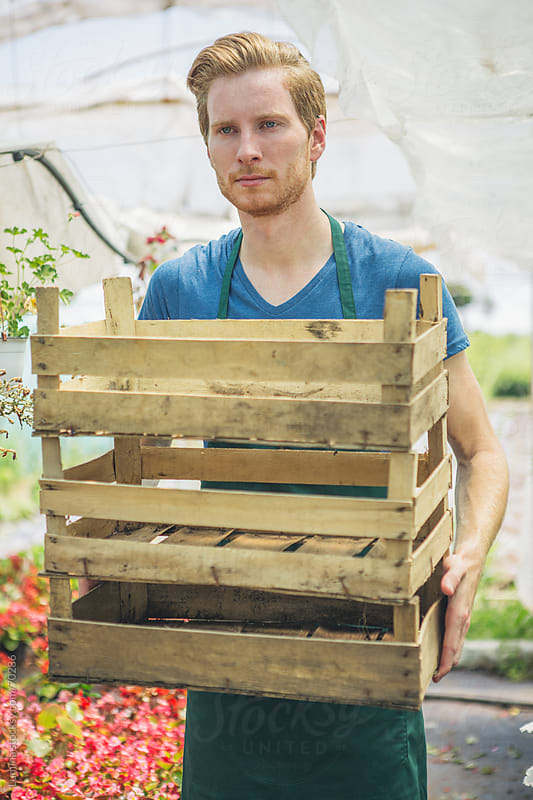 Hothouse Worker Carrying Empty Crates by Lumina for Stocksy United