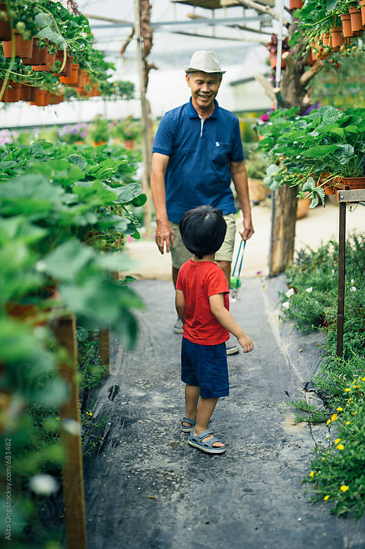Grandpa and grandson in a garden by Alita Ong for Stocksy United