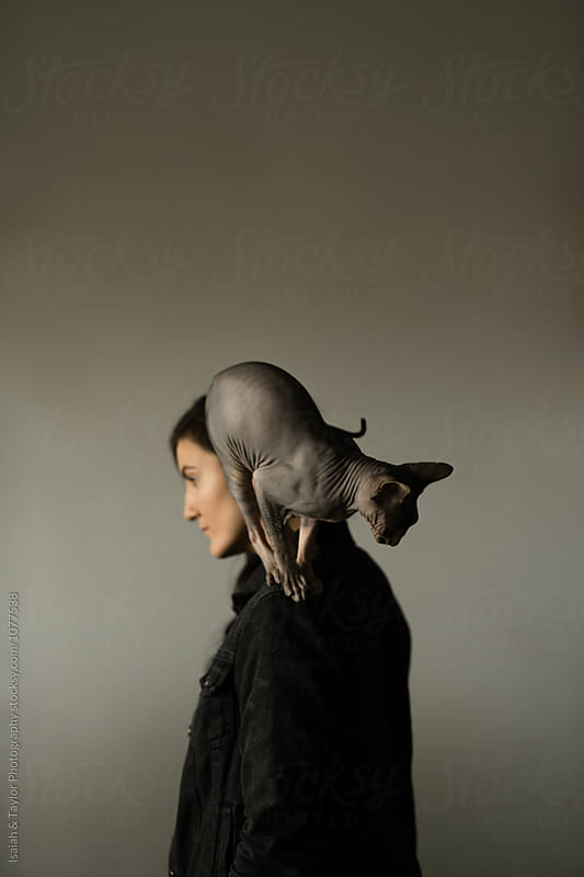 Cat Helmet by Isaiah & Taylor Photography for Stocksy United